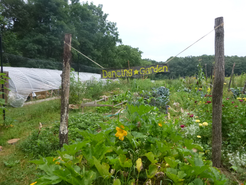 What is Permaculture? by Starhawk