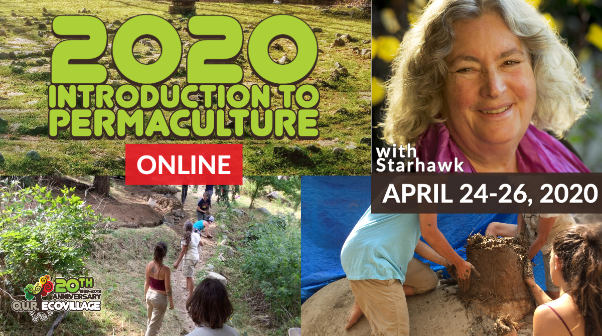 Intro to Permaculture Online w/ OUR Ecovillage