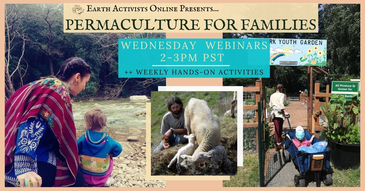 Earth Activist Training: Permaculture for Families
