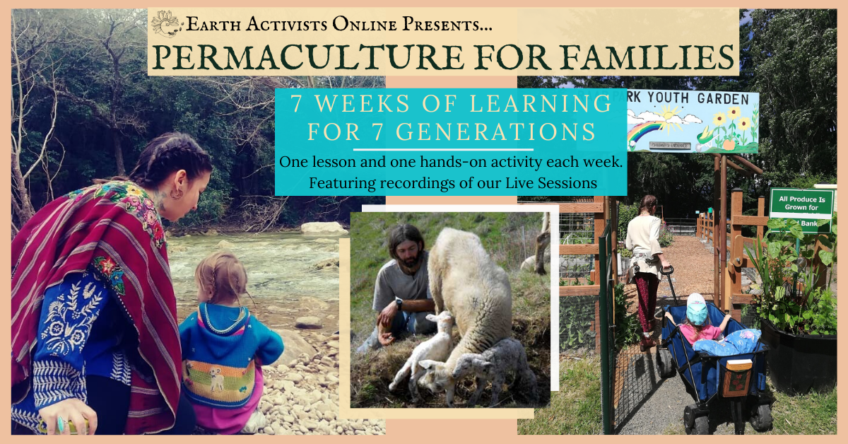 Permaculture for Families: Earth Activists Online