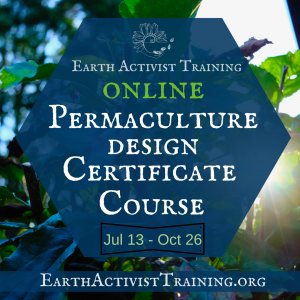 Permaculture Design Certificate Course Online with Starhawk & Friends | Summer/ Fall 2021 @ Earth Activists Online