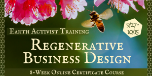 Regenerative Business Design Certificate with Patty Love @ Earth Activists Training Online
