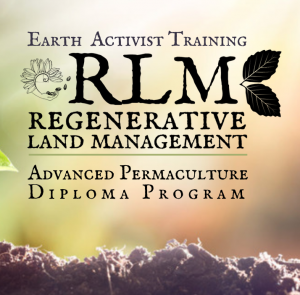 Regenerative Land Management | Advanced Permaculture Diploma Program @ Earth Activists Online